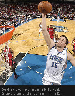 Hedo Turkoglu Basketball Player